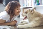 Koronavirus můžou mít i zvířata.