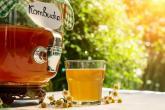 Kombucha je perlivý fermentovaný nápoj s mnoha zdravotními účinky.