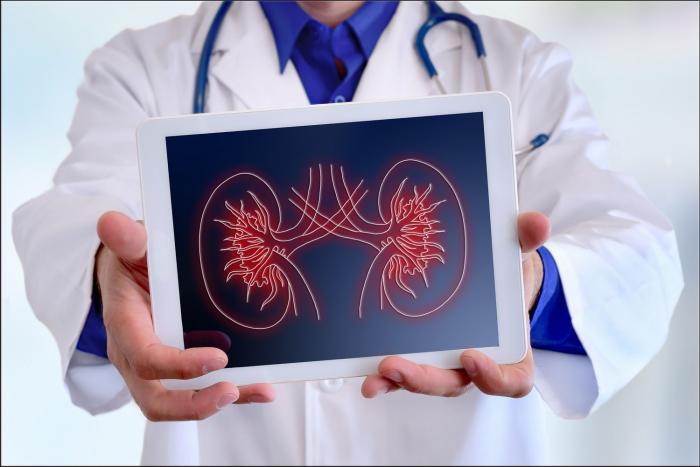Osmý březen je světový den ledvin.