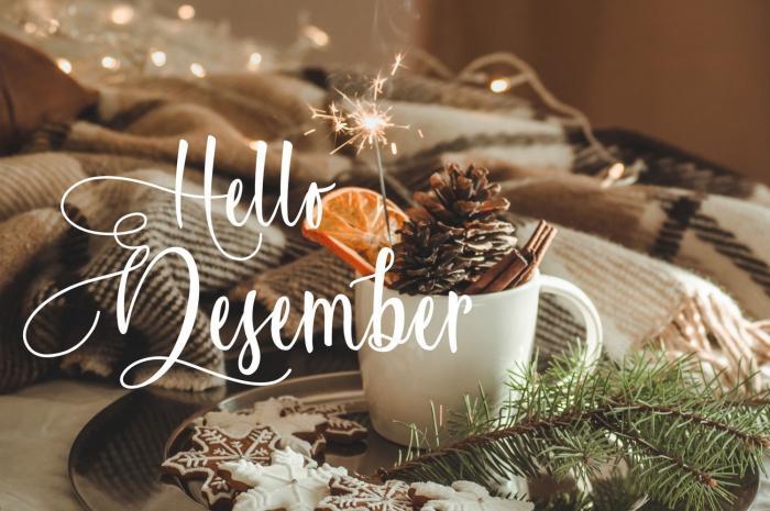 Prosinec přinese spoustu radosti, především o Vánocích.