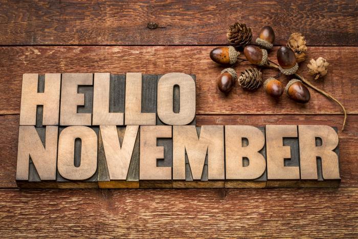 Listopad přináší spoustu nových věcí.