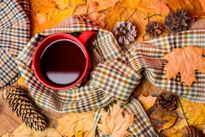 Na podzim přichází čas na teplé nápoje.