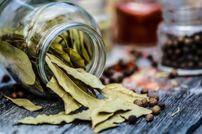 Bobkový list pomůže nejen s vařením, ale i se spoustou záležitostí v domácnosti.