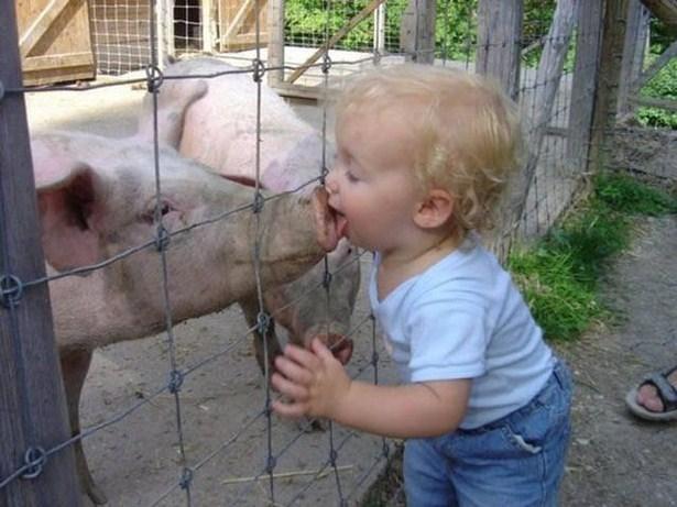 Děti se mají ke zvířatům. K některým víc než k jiným.