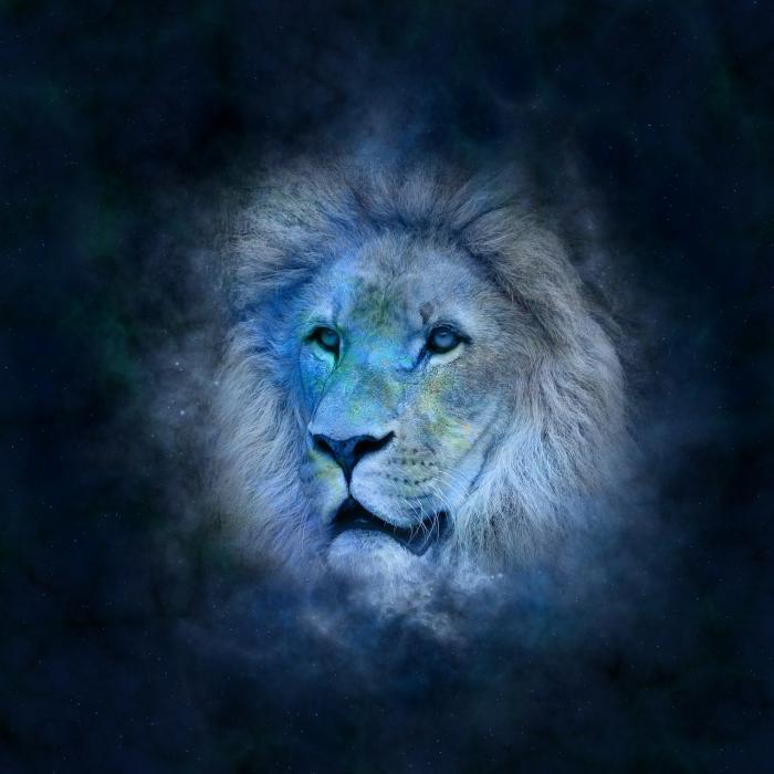 Lvi bývají extroverti a rádi jsou středem pozornosti.
