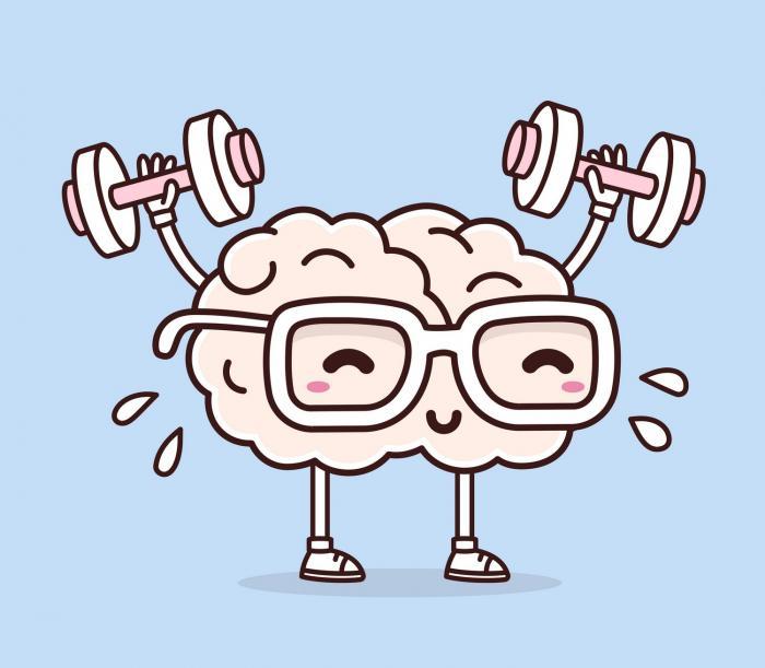 Správná strava je jedním ze způsobů, jak mozek udržovat v kondici.