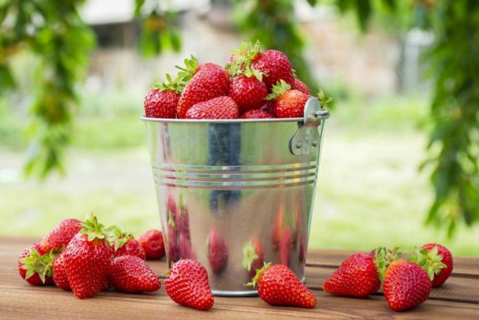Jahody tě nabijí vitamíny a minerály a navíc ani neobsahují moc cukru.