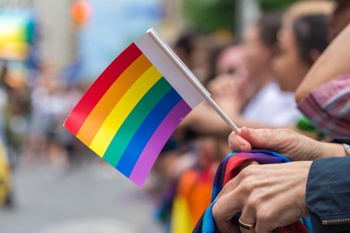 Symbolem pro rovná práva gayů, leseb a dalších osob je duhová vlajka.