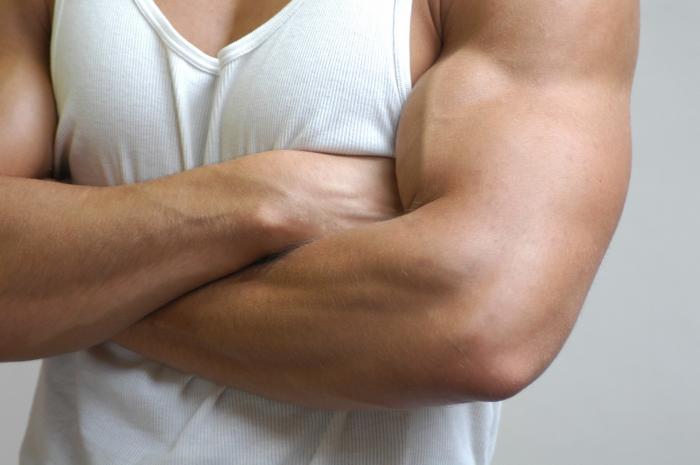 Ženy si dnes hodně potrpí na mužský vzhled, třeba na svaly.