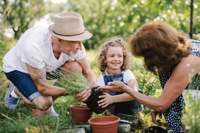 Vnoučata obvykle vyrůstají v jiných podmínkách, než v jaké doufají jejich prarodiče.