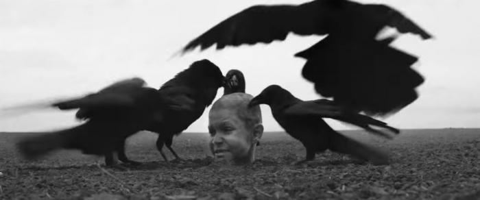 Nabarvené ptáče je psychologické drama plné sadismu, sodomie, pedofilie nebo týrání zvířat.